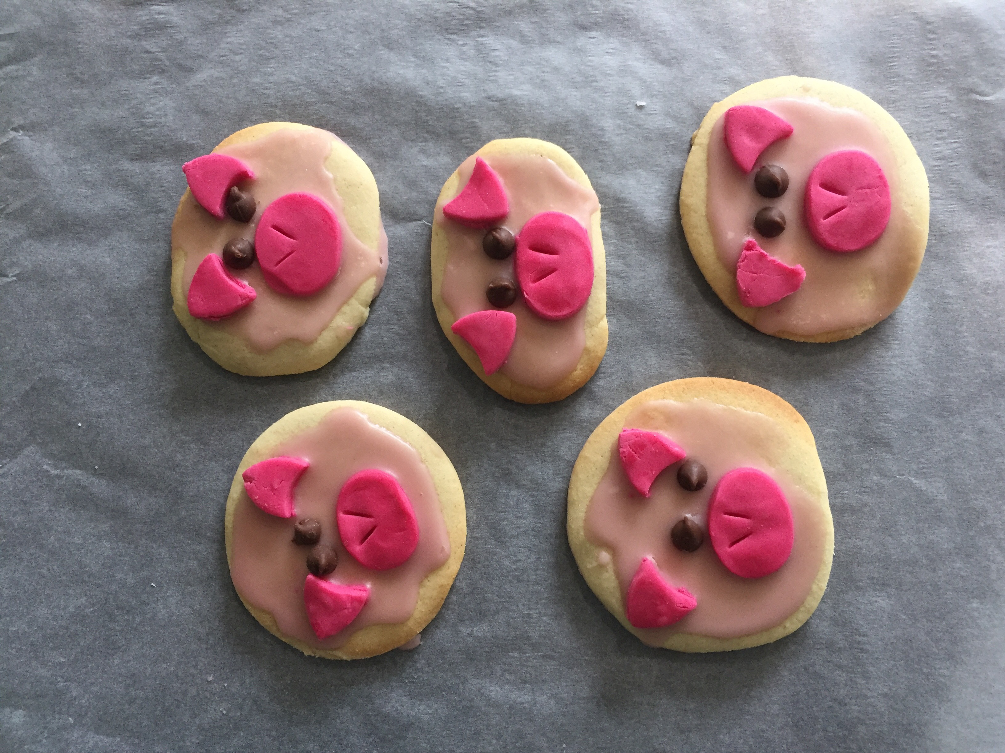piggy biscuits